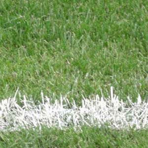 Teammember Jugendkonzept/Förder- & sportartübergreifendes Ergänzungstraining